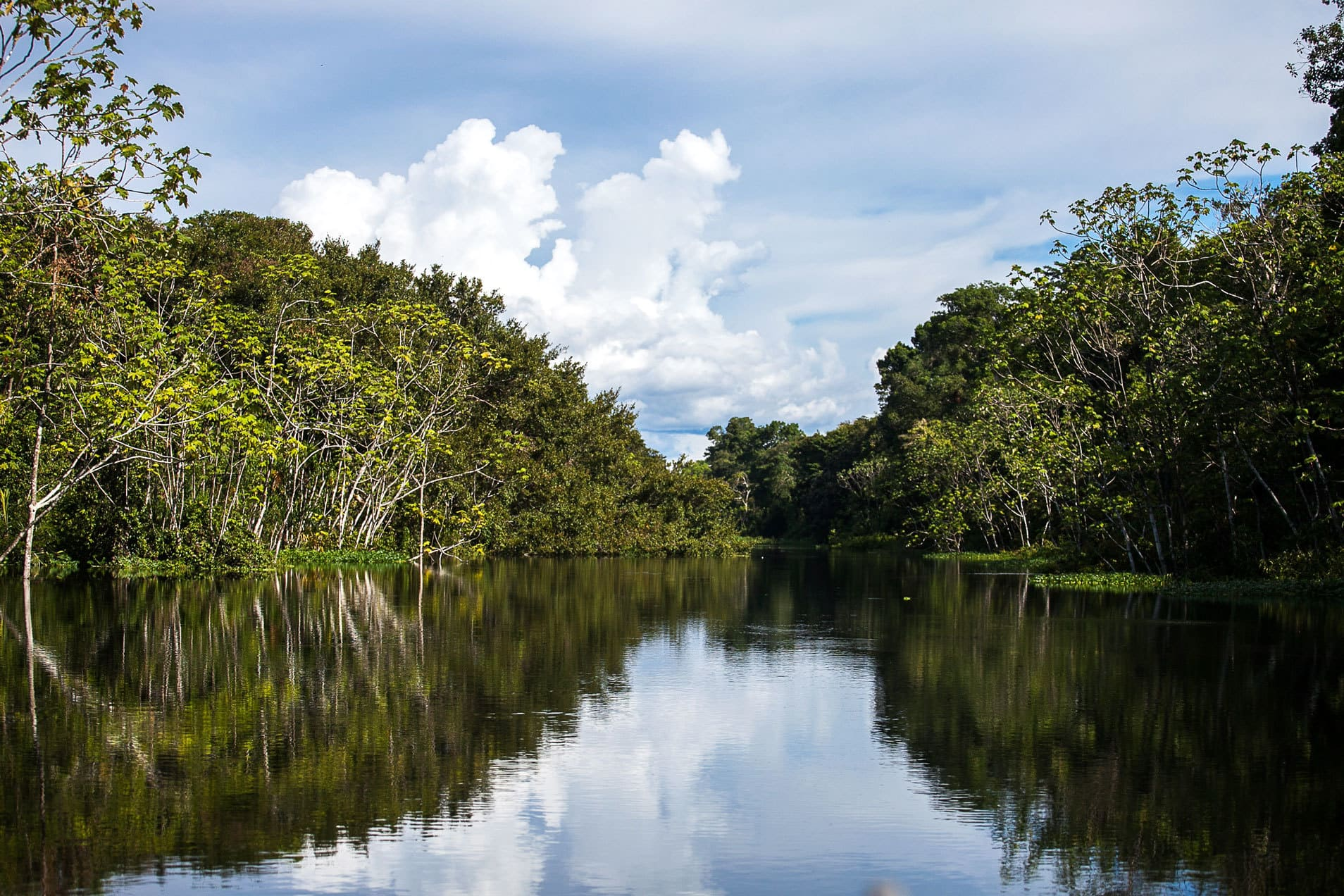 The Luxury Amazon River Cruise