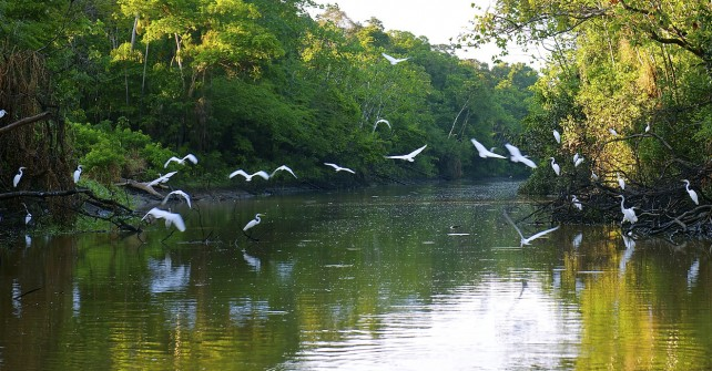 Amazon River, a natural Wonder of the World