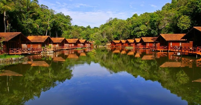 Discover the Amazon Rainforest in Peru