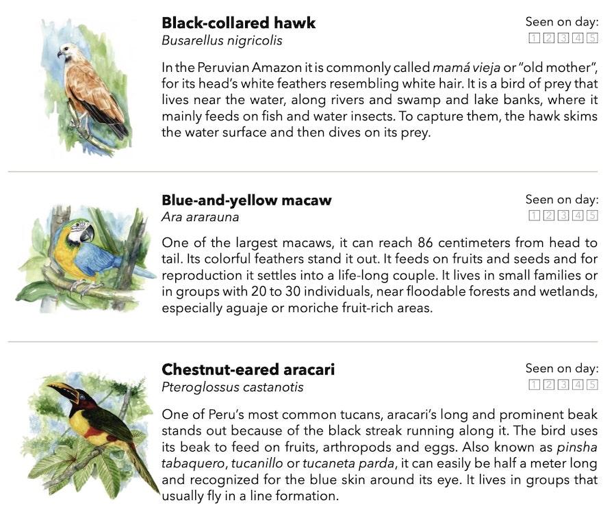 Pacaya Samiria Wildlife Checklist