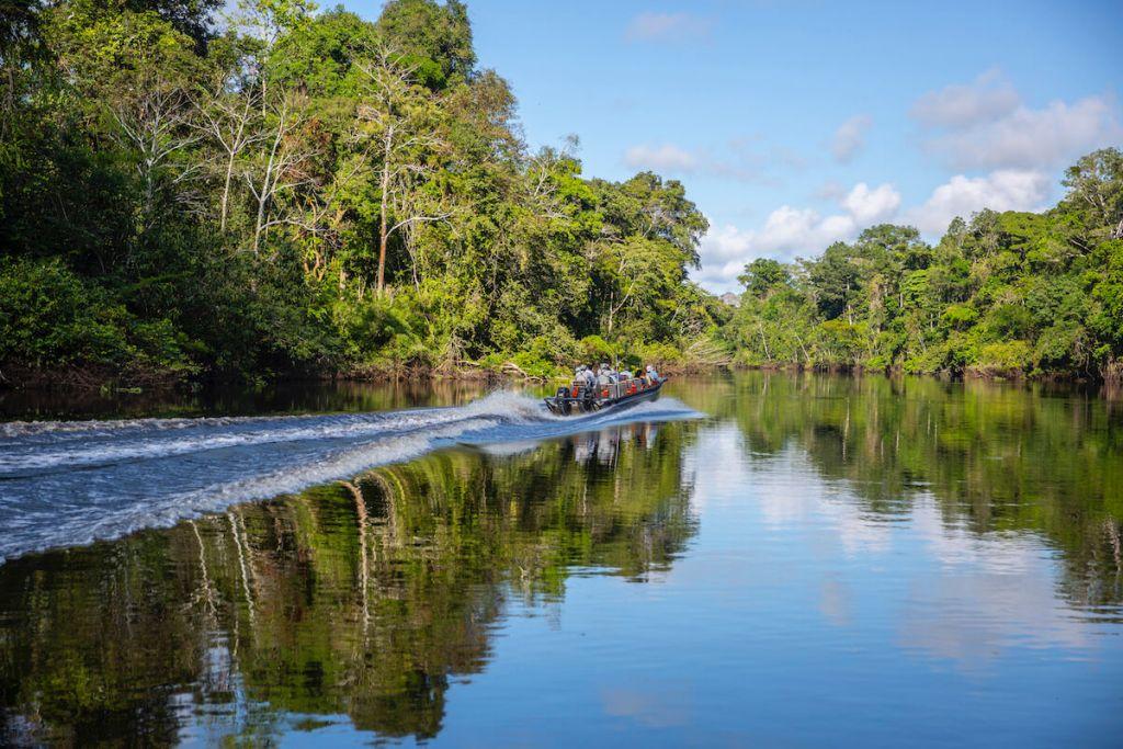 Delfin Amazon Cruises Exploration