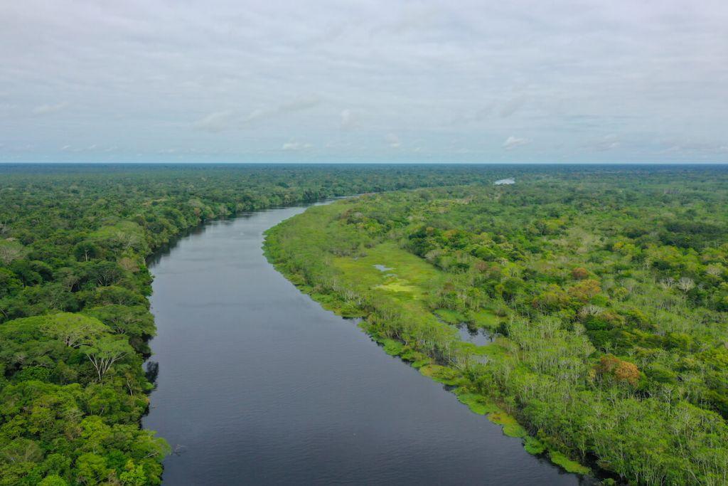 Upper Peruvian Amazon
