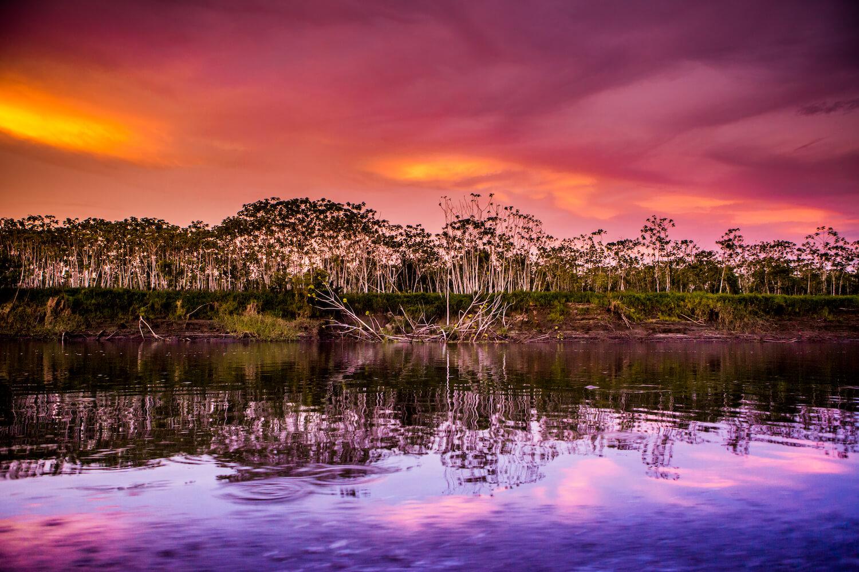 Travel Diary: My Delfin Amazon Cruises Experience