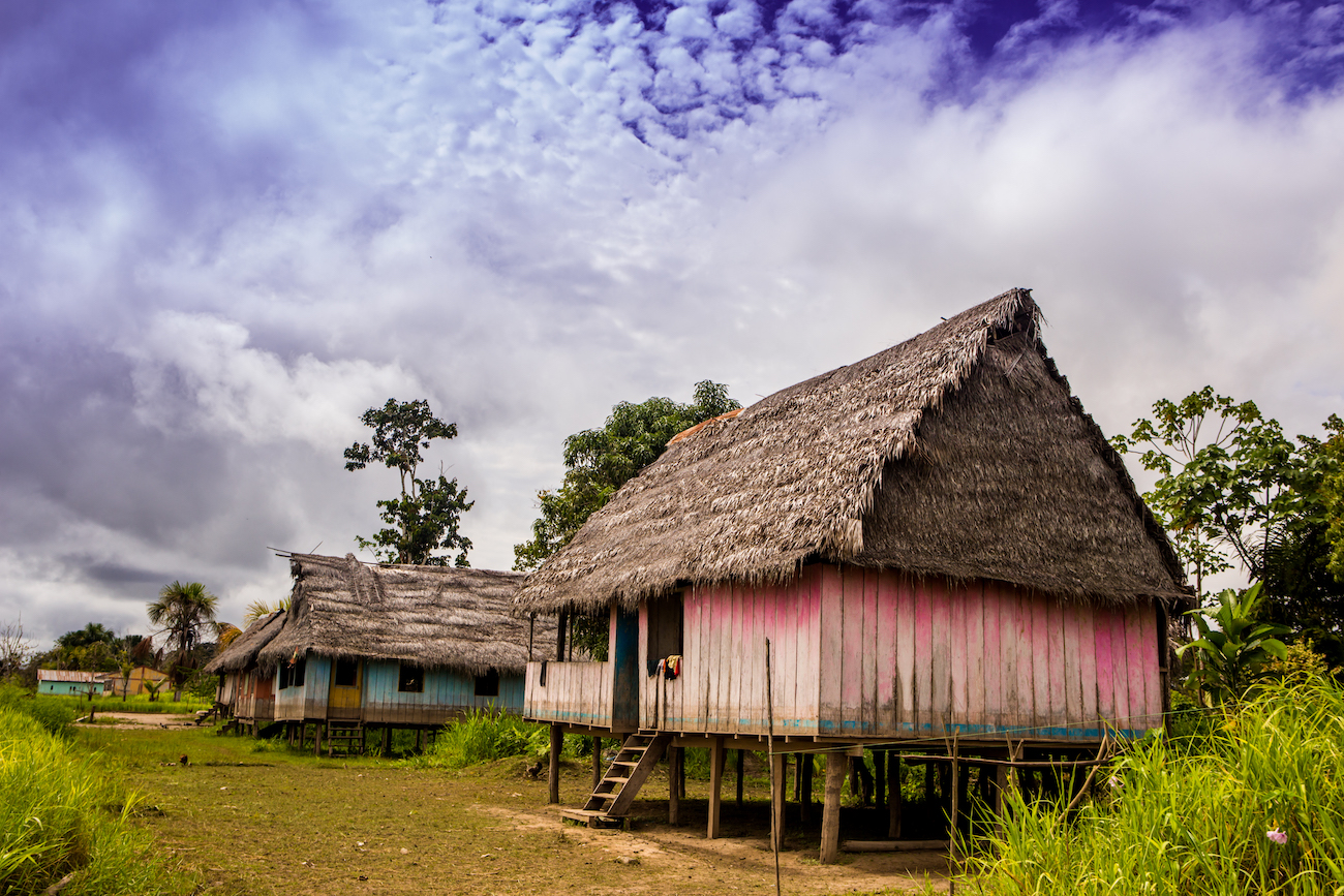 Threats to the Amazon Rainforest